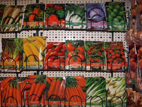 Verkoop van zaden en plantgoed