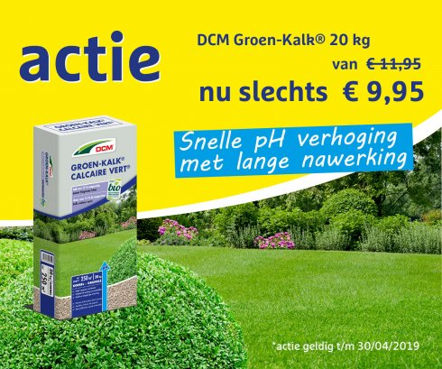 DCM actie